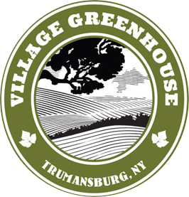 Village Greenhouse in Trumansburg, NY